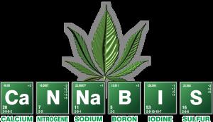 Cannabispflanze wird buchstabiert
